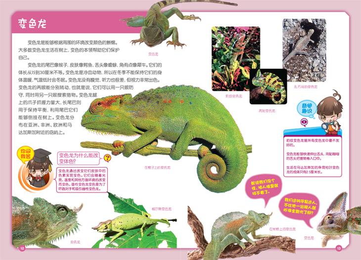 奇趣百科动物世界两栖爬行鸟类家族恐龙揭秘图片
